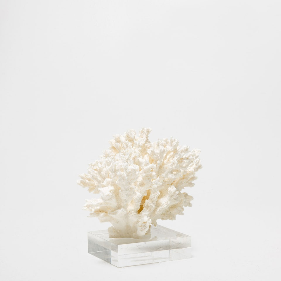 Decorative coral accessories decor home collection sale zara home u - Zara home accessories ...