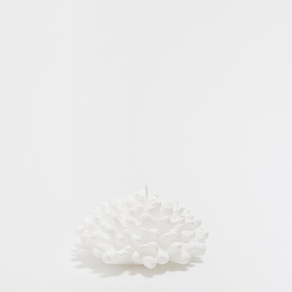 White marine-shaped candle