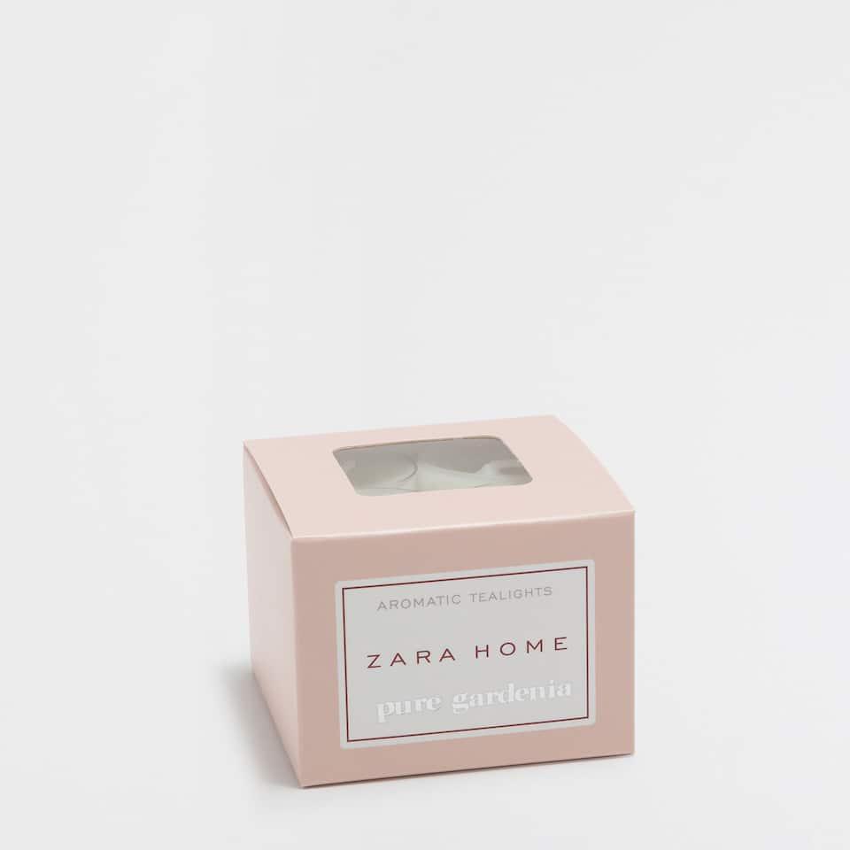 Pure Gardenia Tealight (Pack of 12)