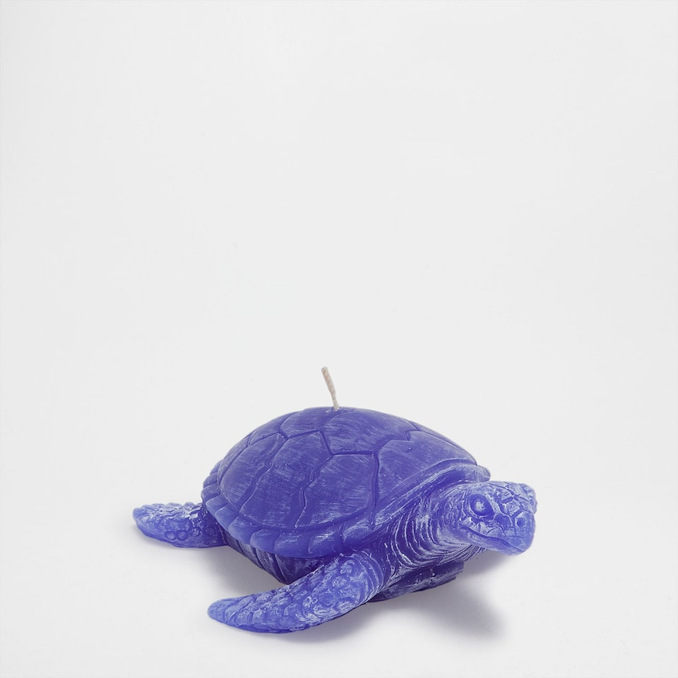 Blue turtle candle