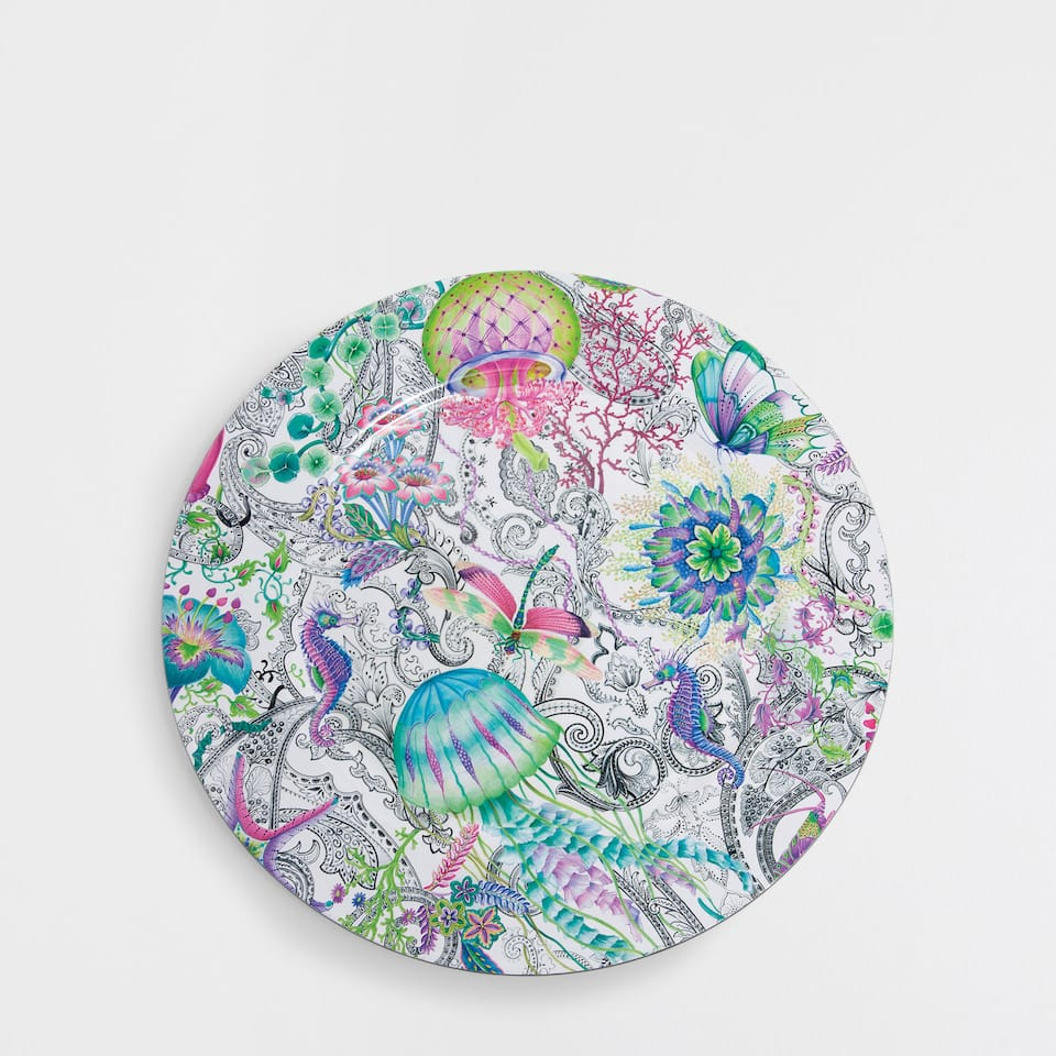 Multicoloured plate charger