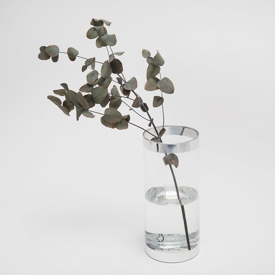 TRANSPARENT GLASS VASE WITH A SILVER EDGE