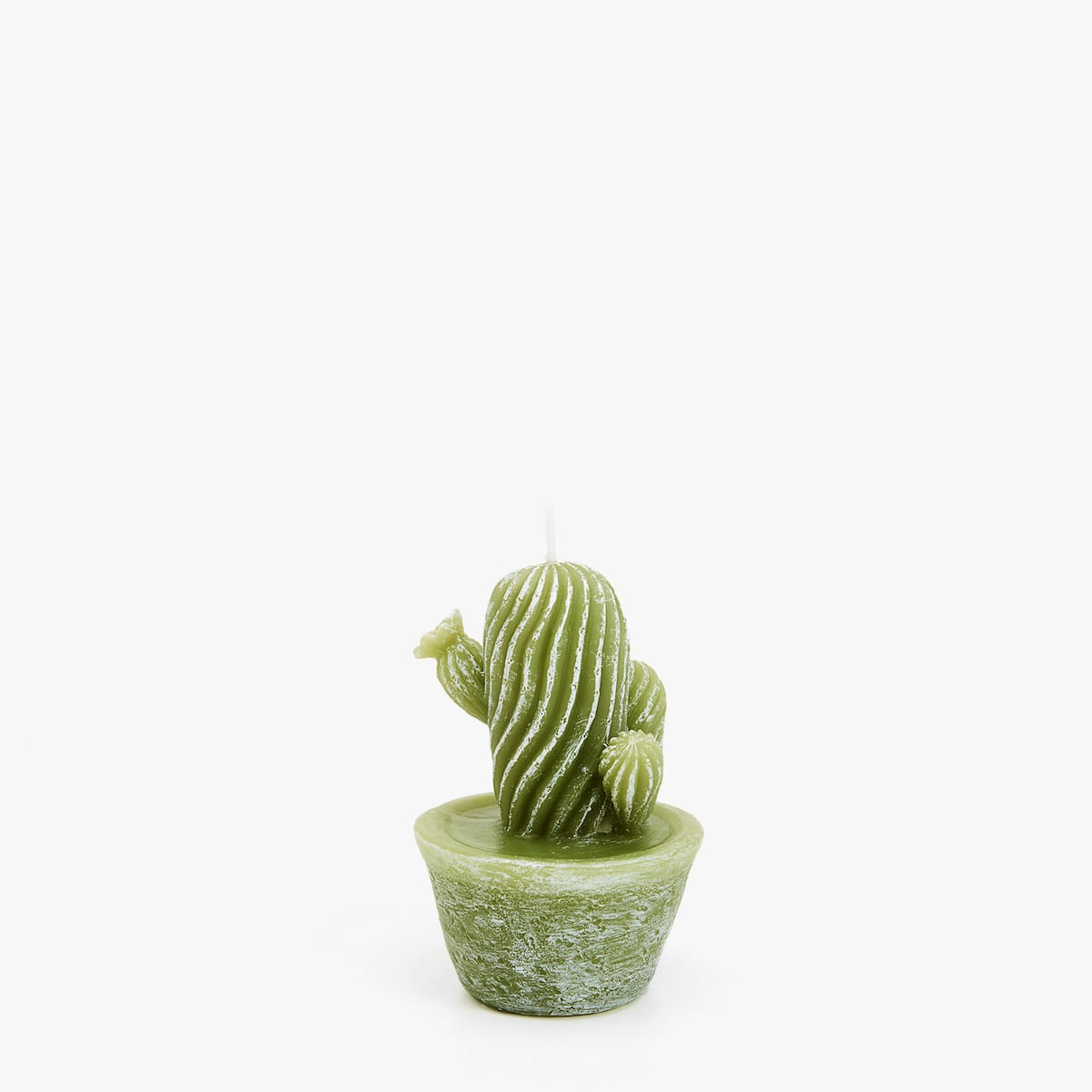 Cactus Candle - Zara Home