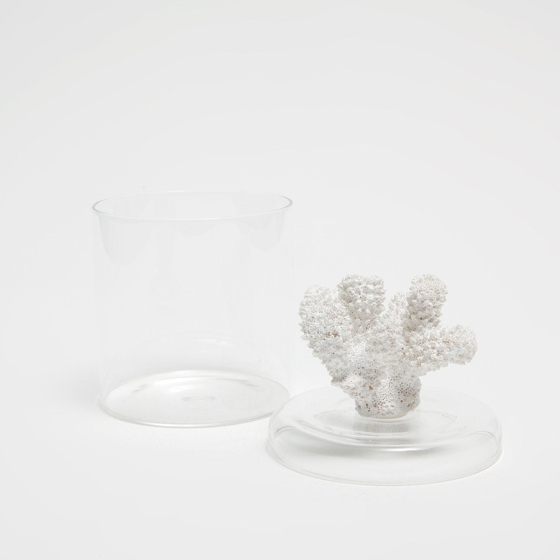 glasbehälter mit korallendeckel - badaccessoires - bad | zara home, Hause ideen