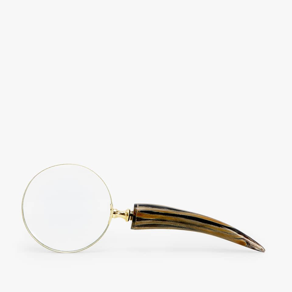 DECORATIVE HORN-SHAPED MAGNIFYING GLASS