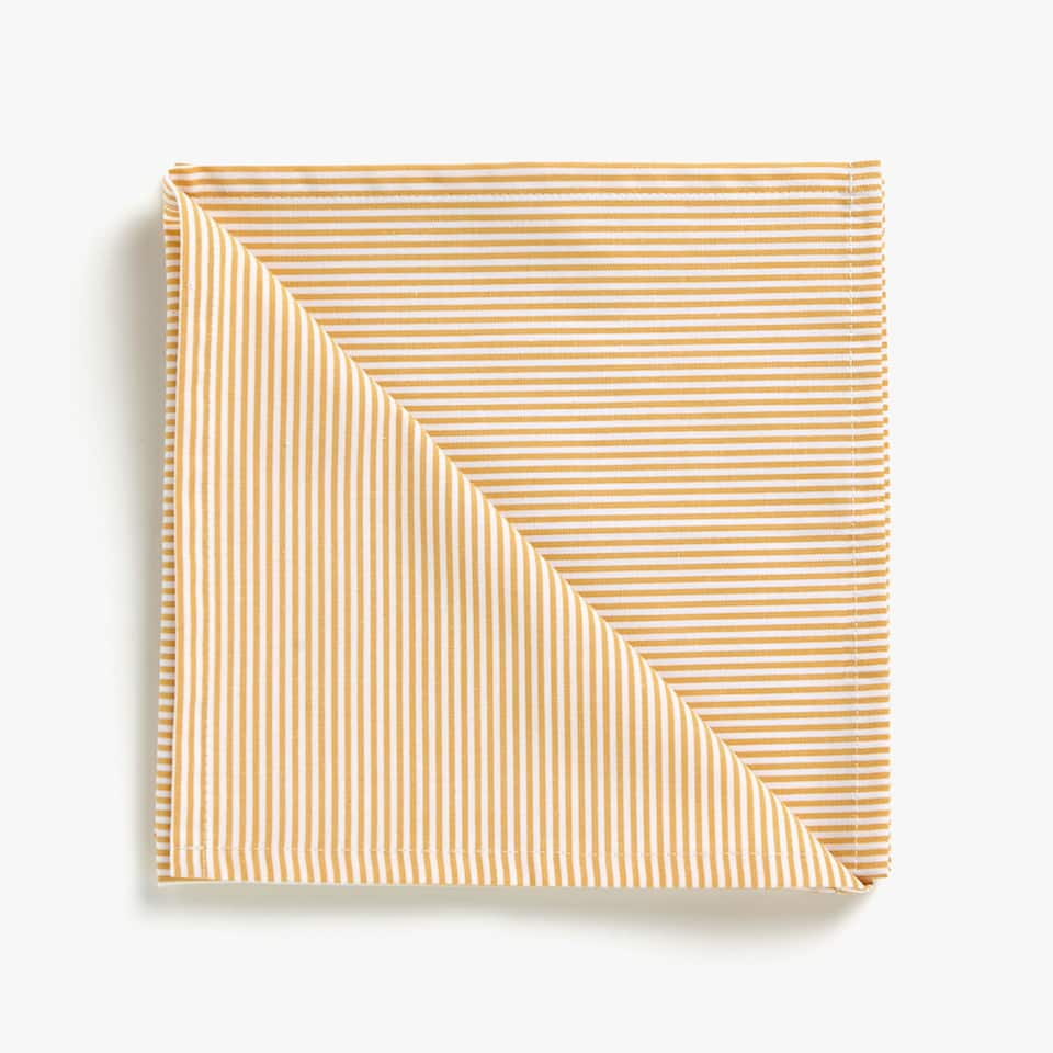 STRIPED COTTON NAPKINS (SET OF 2)