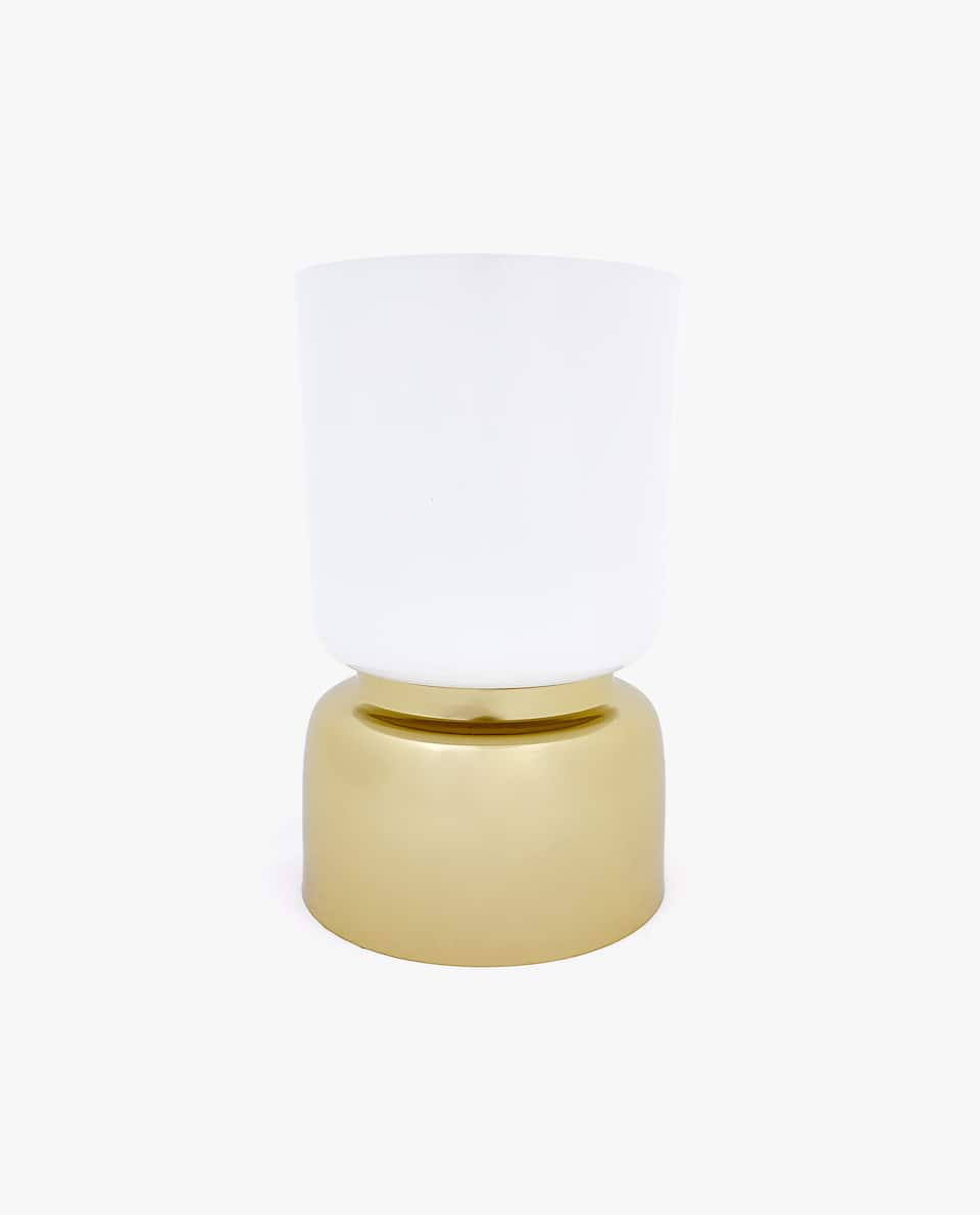 SMALL PLANTER WITH GOLDEN BASE