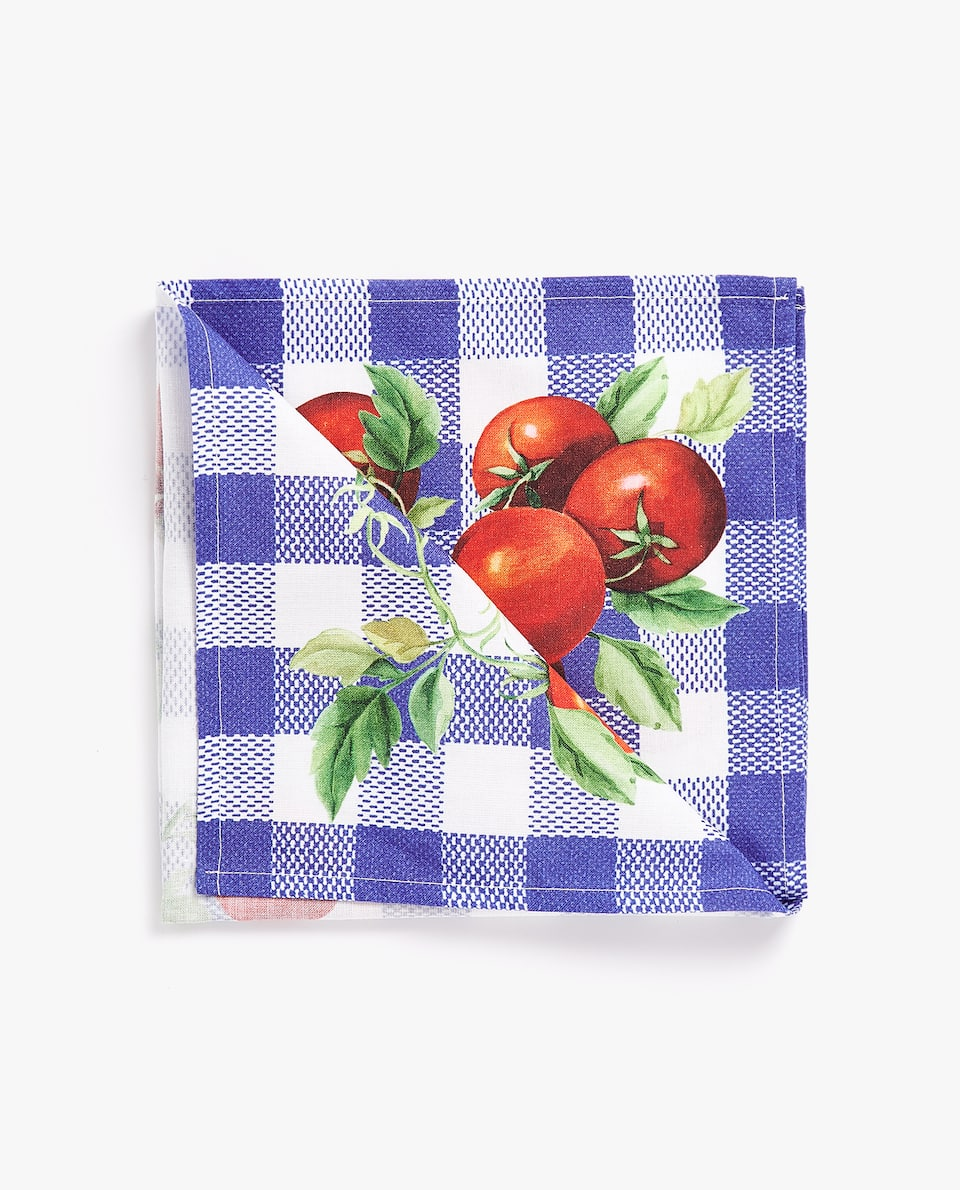 GINGHAM CHECK AND TOMATO PRINT NAPKIN (PACK OF 4)