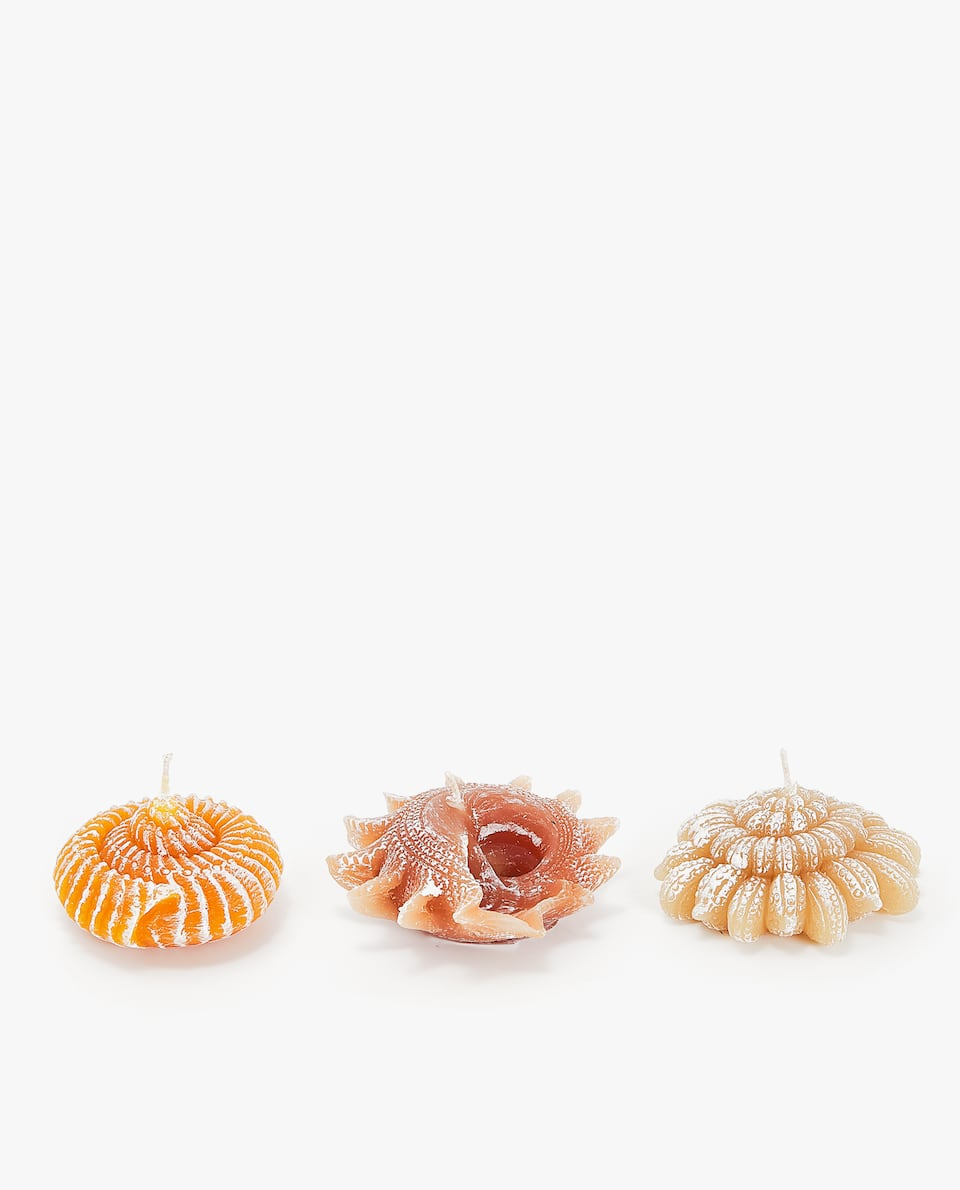 SHELL-SHAPED CANDLE