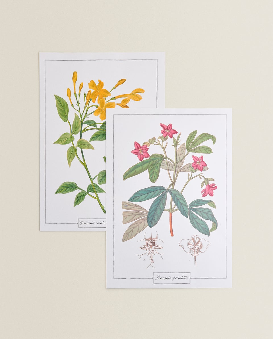 DECORATIVE FLOWER PRINT (PACK OF 2)