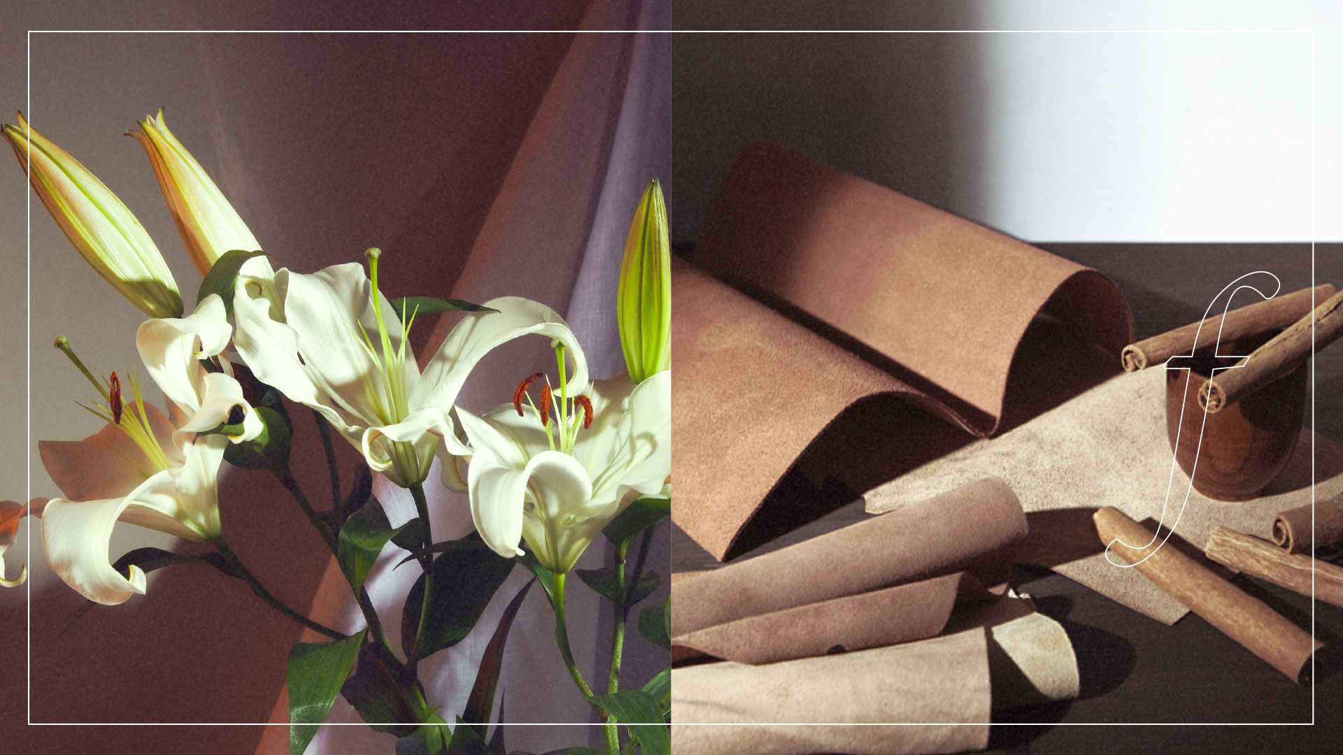 Zara home neue kollektion offizielle web